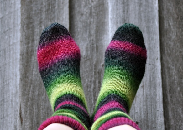 Socks_26sml